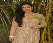 actress iniya05 28129.jpg from tamil actress xnu